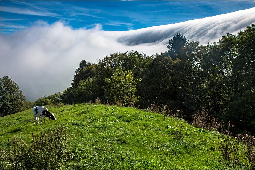 Der Wolkentsunami