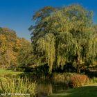 Der wunderbare Park beim Schloss Hever (Edenbridge, Kent, UK)