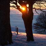 Der Wunsch, mit der Natur in Harmonie zu leben...