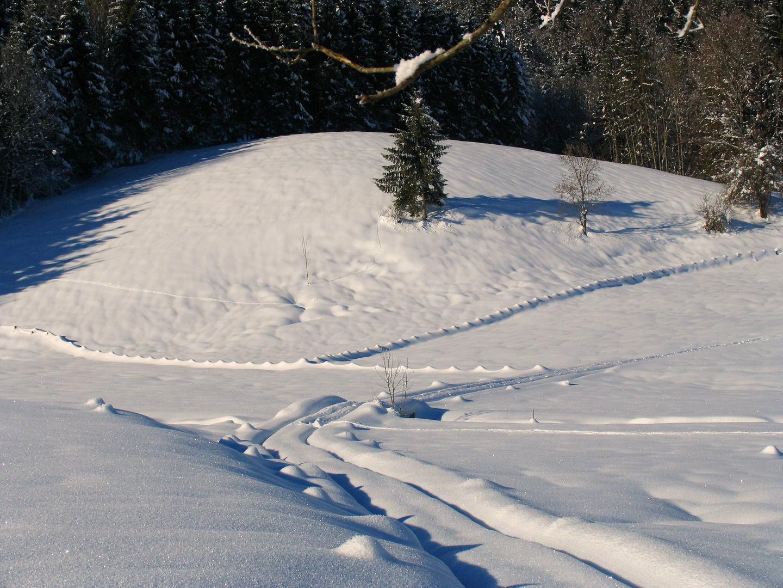 """Der Zauberer """" Winter """""""