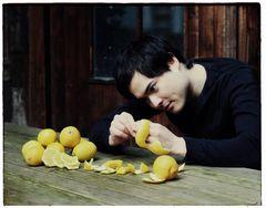 Der Zitronenfalter