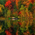 Der zu frühe Herbst