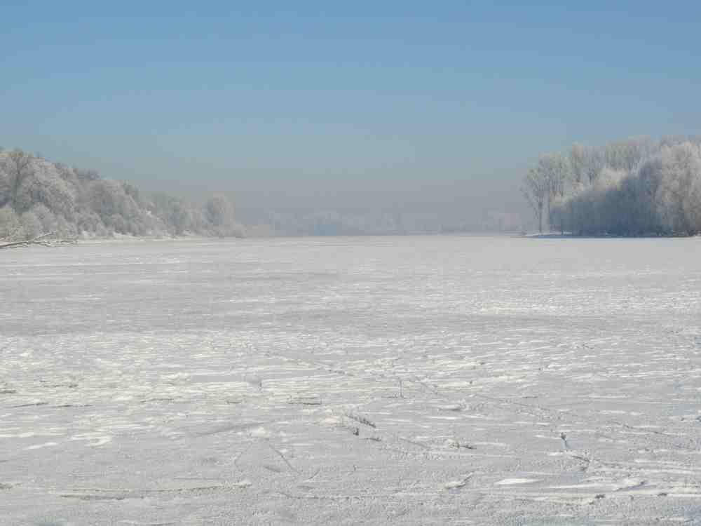Der zugefrorene Altrheinarm in Xanten - Birten