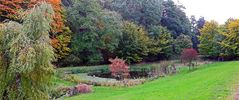 Der zweite liebevoll angelegte kleine Teich, neben dem ...