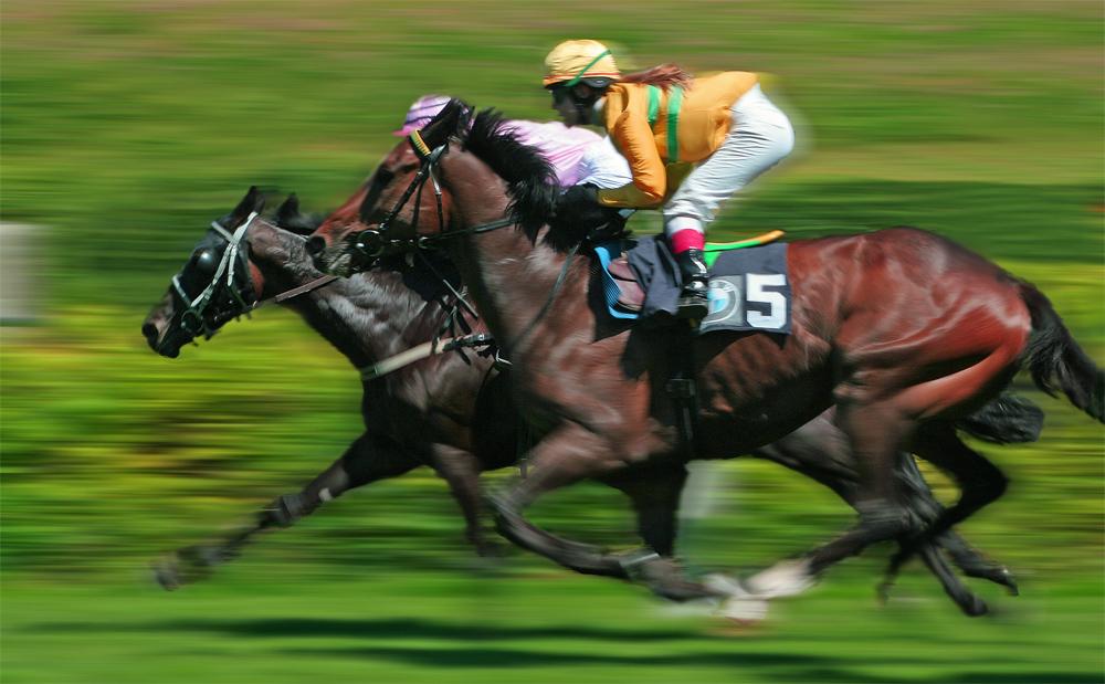 Derby 2006 [Bearbeitet]