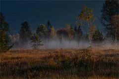 /// Der.Nebel.lichtet.sich ///