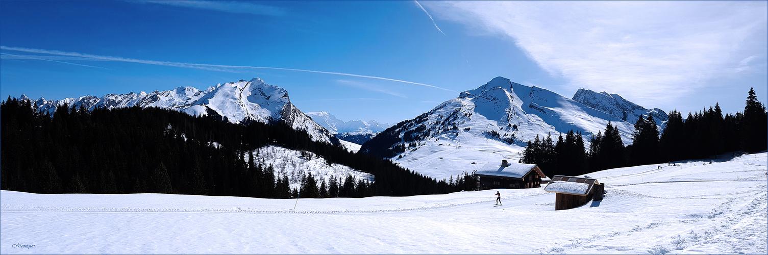 Dernière neige .... pour les amoureux de l'hiver !!!
