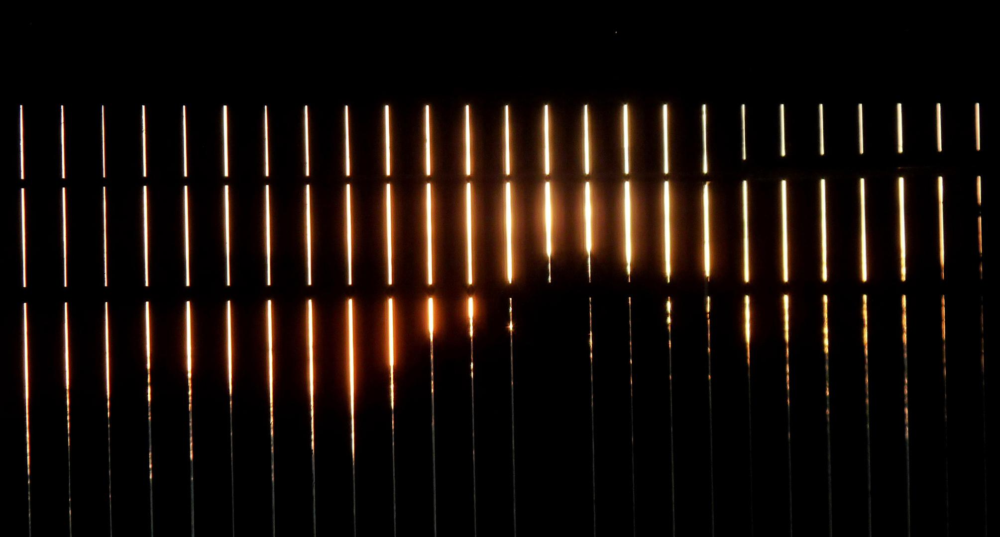 Derrière la palissade. photo et image | visions ... - La Palissade