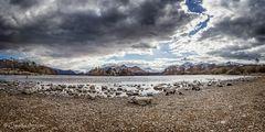 Derwent Water Panorama