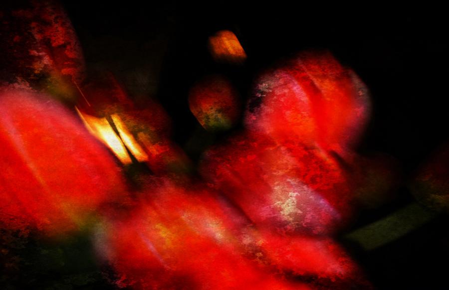 des fleurs de printemps en nuit # 3