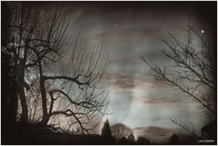 Des Nachts...