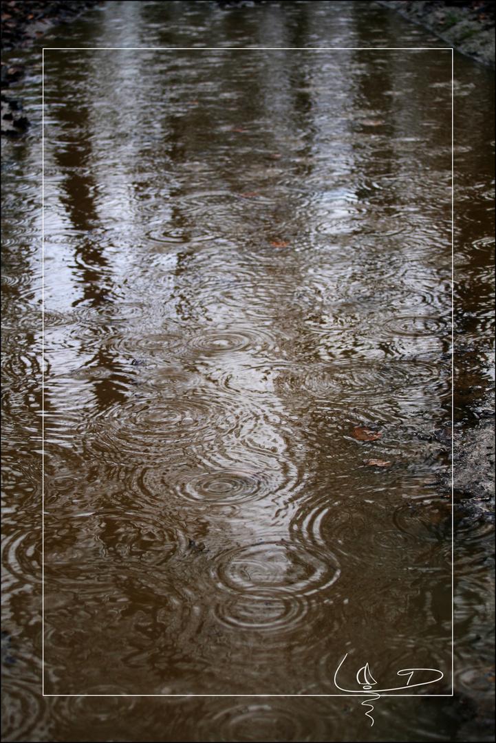 Des ronds dans l'eau...