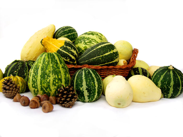 Des Sommers Früchte