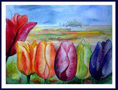 Des Tulipes ( bonbonfarben)