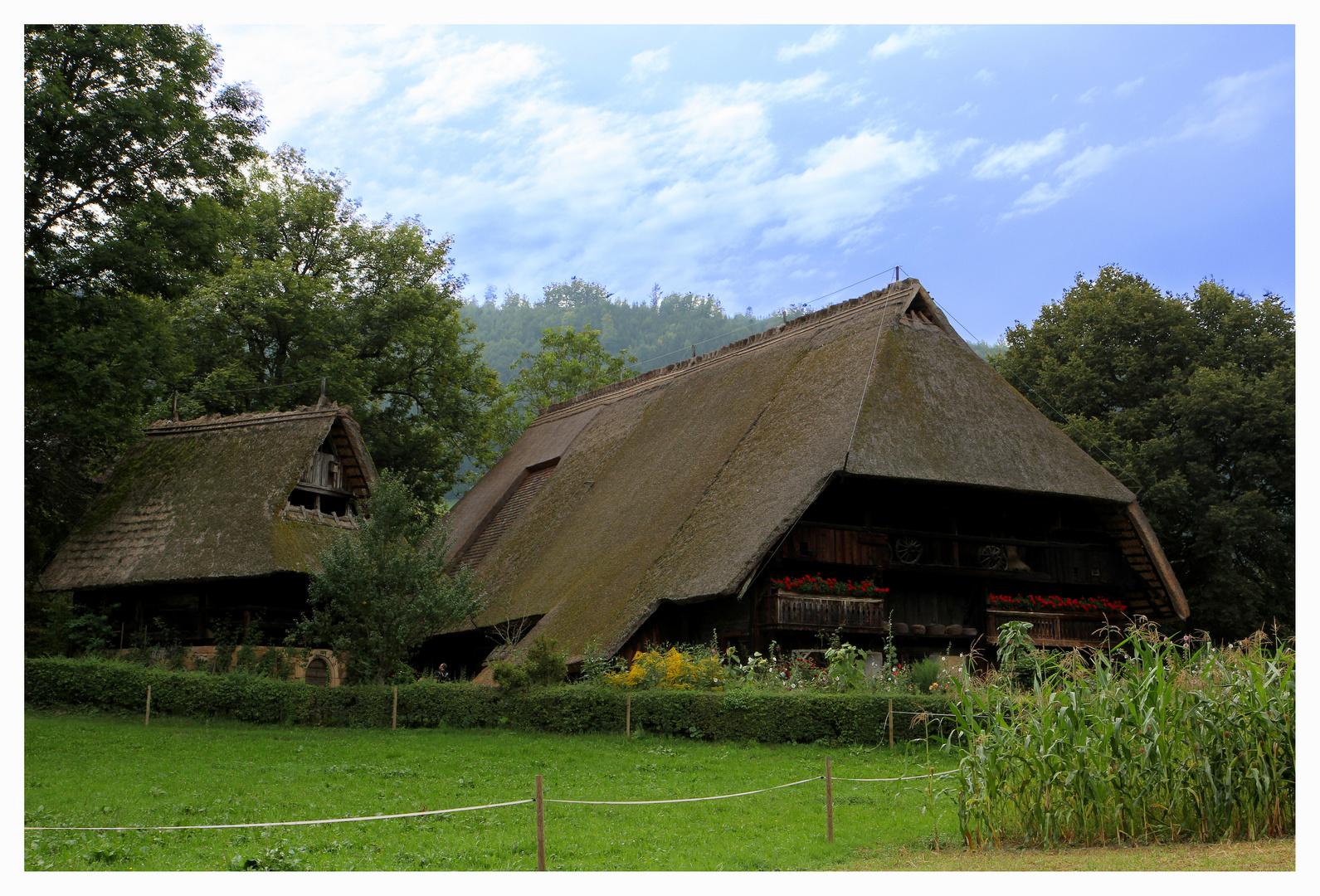 Des Vogts Bauernhof
