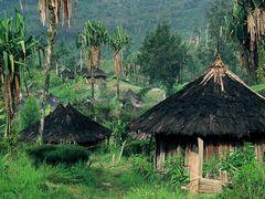 Desa Orang Yali