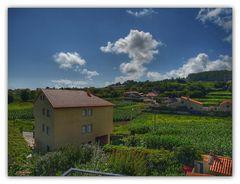 desde el balcón viñas y maizales (HDR)