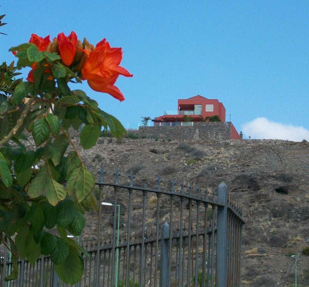 Desde el Barranco