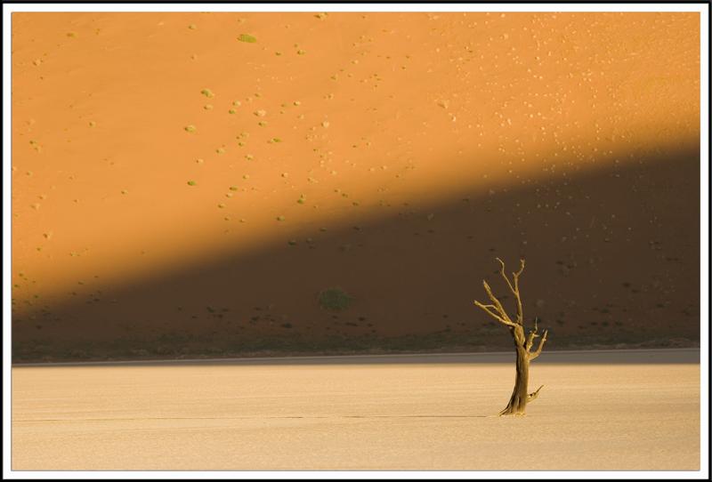 Desert du Namib