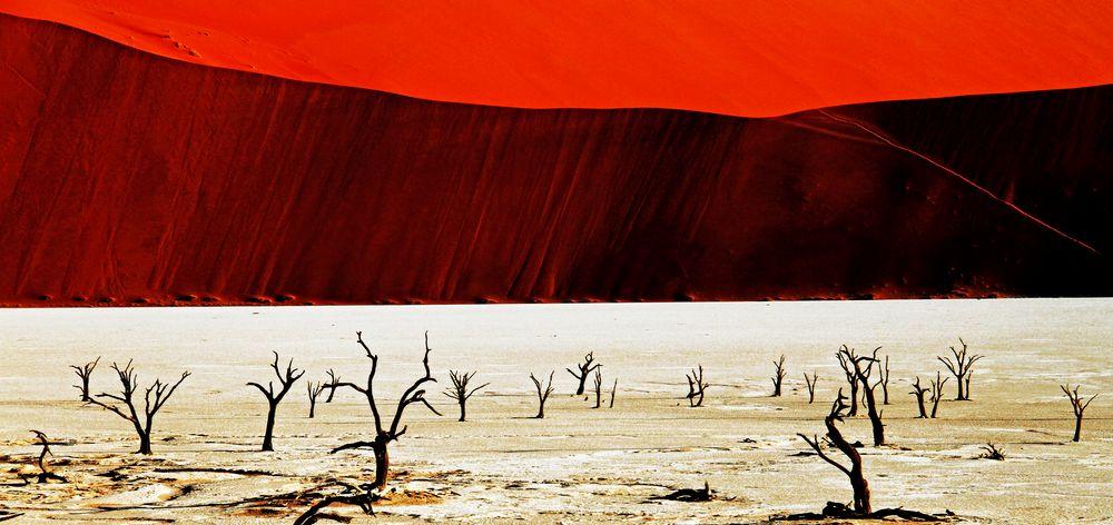 desert dune