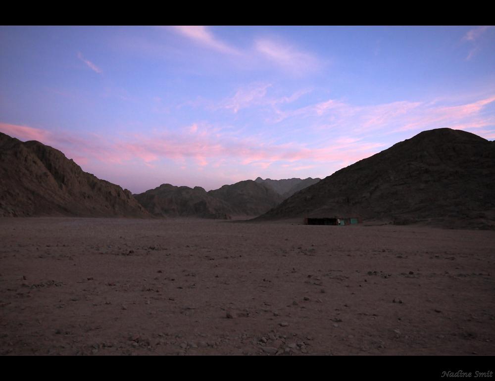 .::DESERT II::.