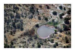 Desert Pool - Wüstenteich