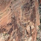 Desert Varnish...Grand Canyon
