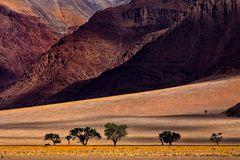 desert.colors.afrika