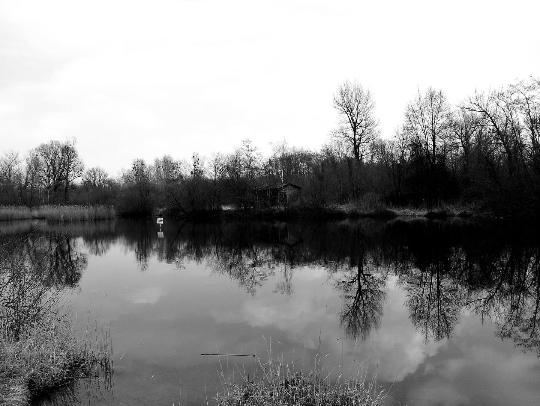 Deserted Lake