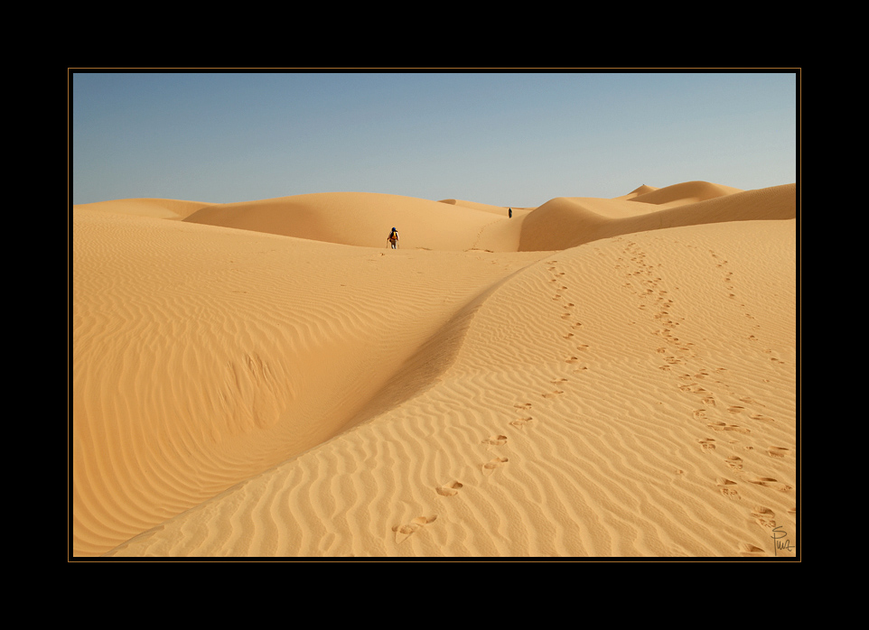 ___desert_IX___