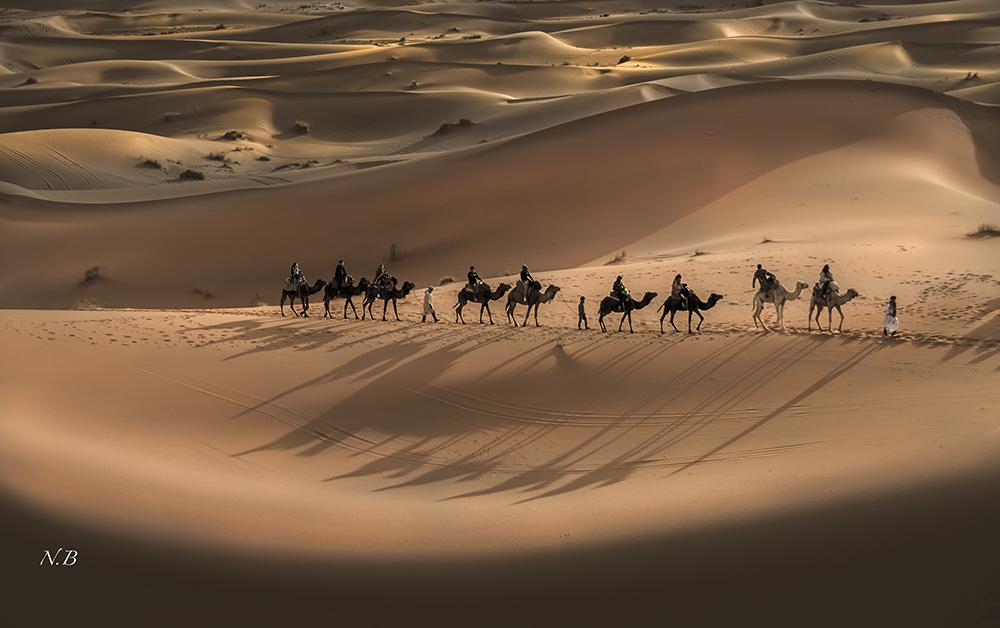 Desierto de dunas
