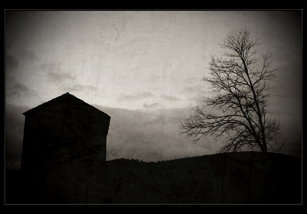 || DesolateD ||