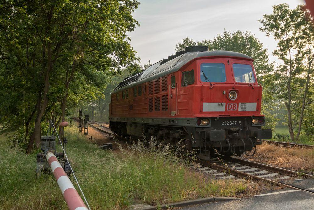 Dessau-Mosigkau, 232 347-5
