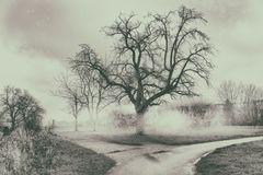 Destiny tree