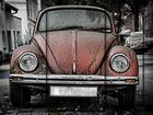Destroyed Beetle N°2