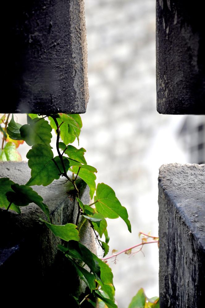 Detail am London Tower