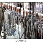 Detail der Artemis