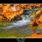 Detalle del Río Tinto