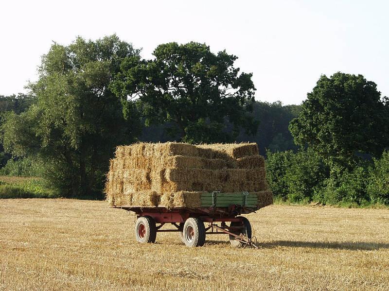 Deutschland Deine Landwirte 1