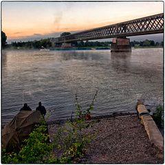 Deutschland im Quadrat - Angler am Rhein
