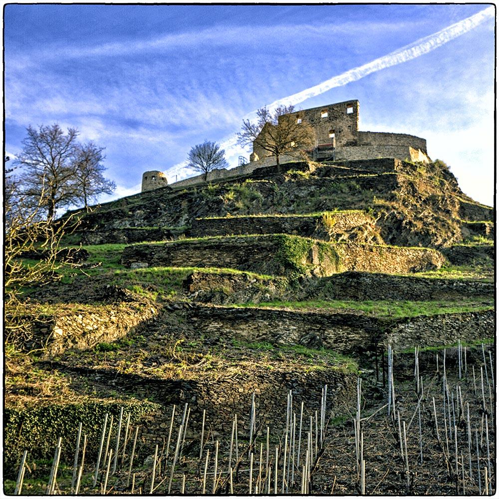 Deutschland im Quadrat - Wächter der Weinreben