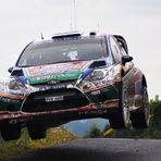 Deutschland Rallye 2011 Vol. 2