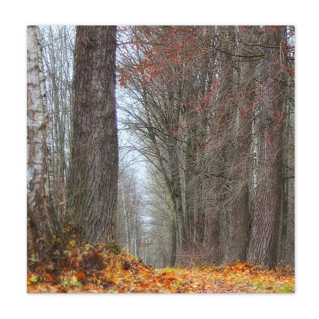"""""""Dezember mit Herbsttouch"""""""