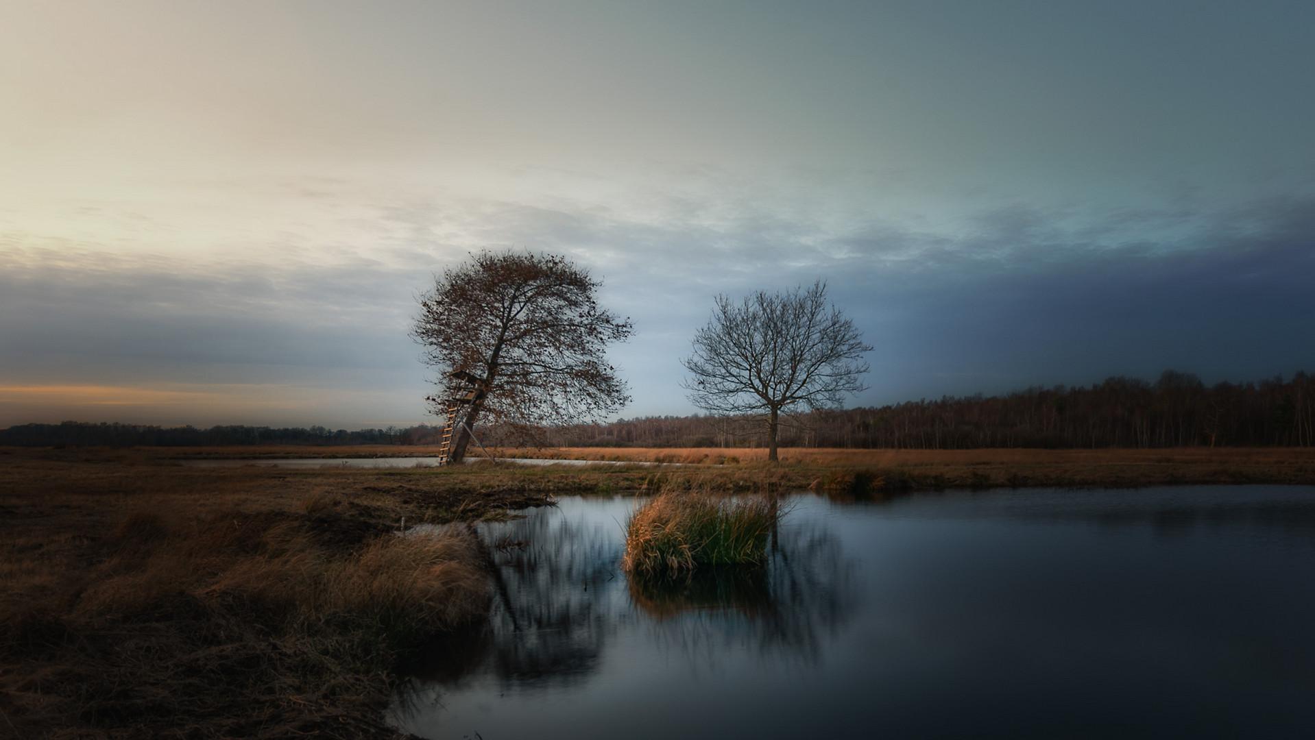 Dezember-Moor