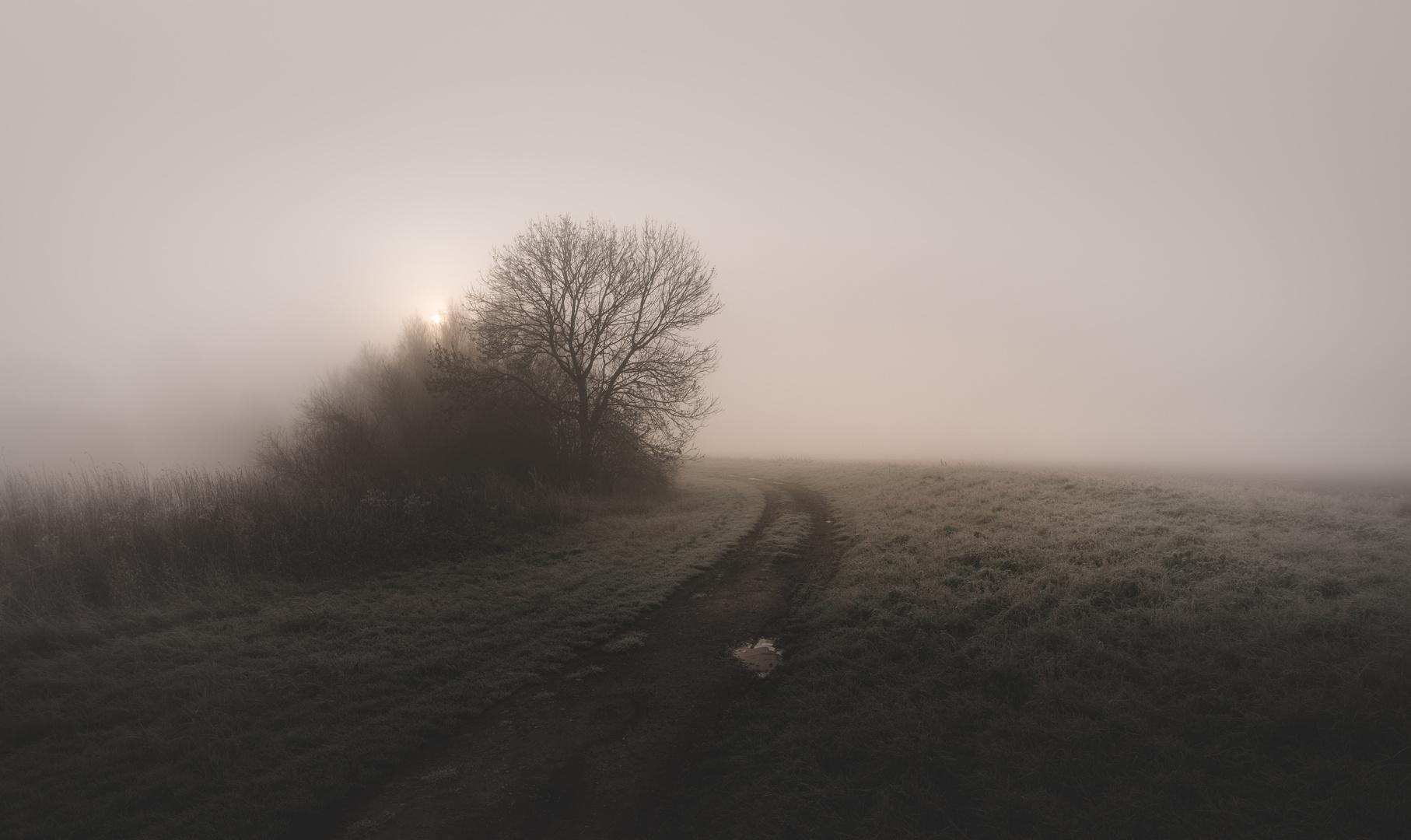 * Dezember Nebel *
