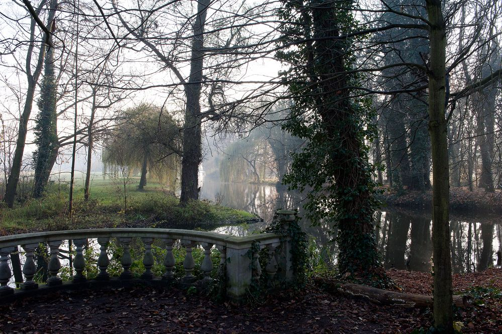 Dezembermorgen im Schlosspark Blankensee