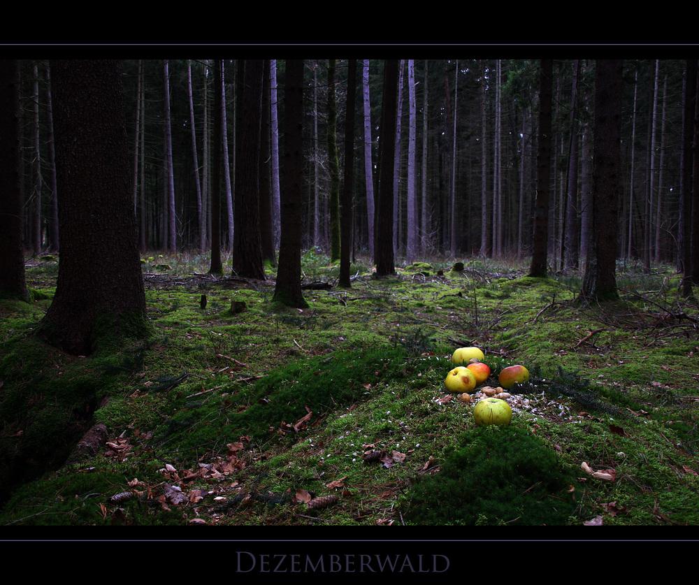 Dezemberwald