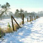 D'hiver...