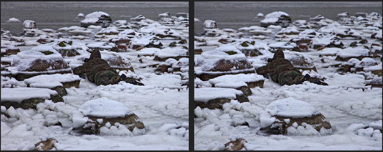 Diana im Schnee (3d - Kreuzblick)