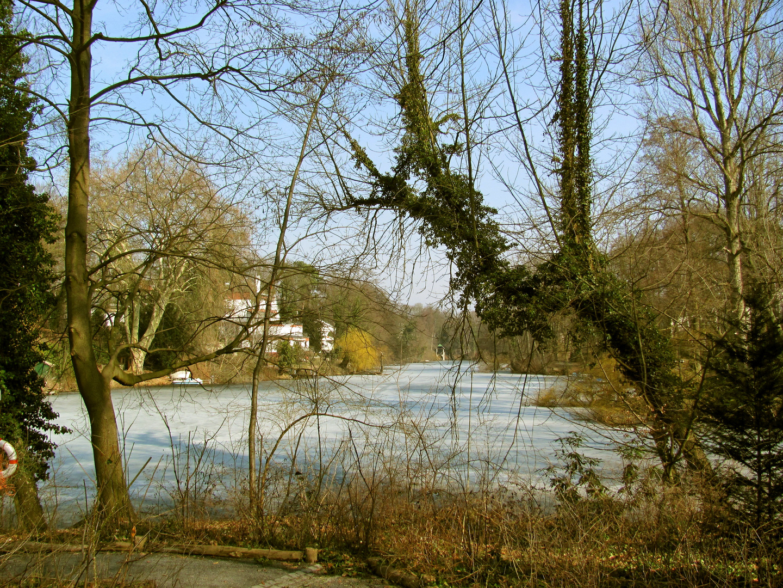 Dianasee in Berlin-Grunewald